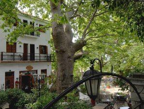 Kritsa Gastronomy Hotel – Πορταριά Πηλίου